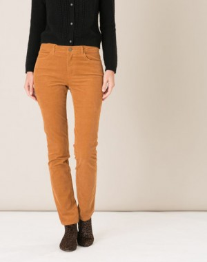 Pantalon camel en velours William – 123